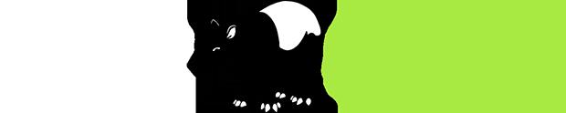 Tapir Design